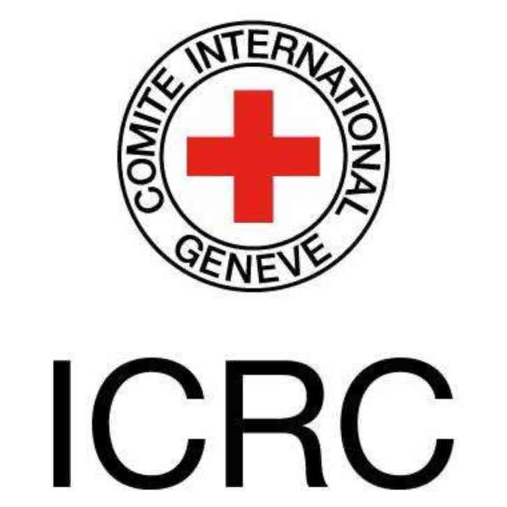 Intl Red Cross Logo